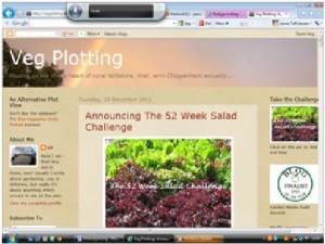Bloggen Veg Plotting