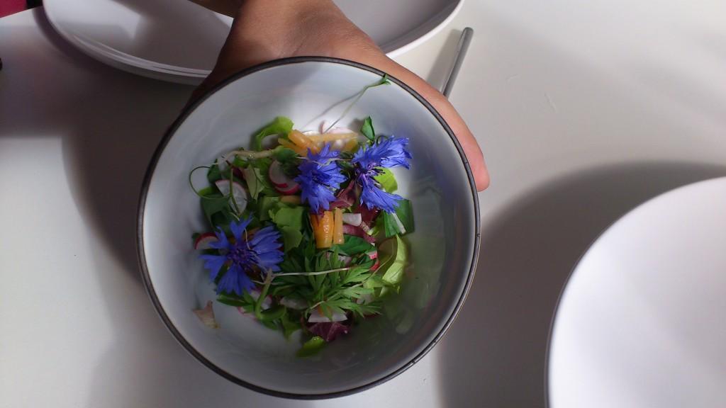 100% hjemmedyrkede ingredienser i salatn