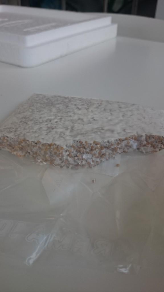 Mycelium i blok - brækkes i små stykker og blandes i grumsen.
