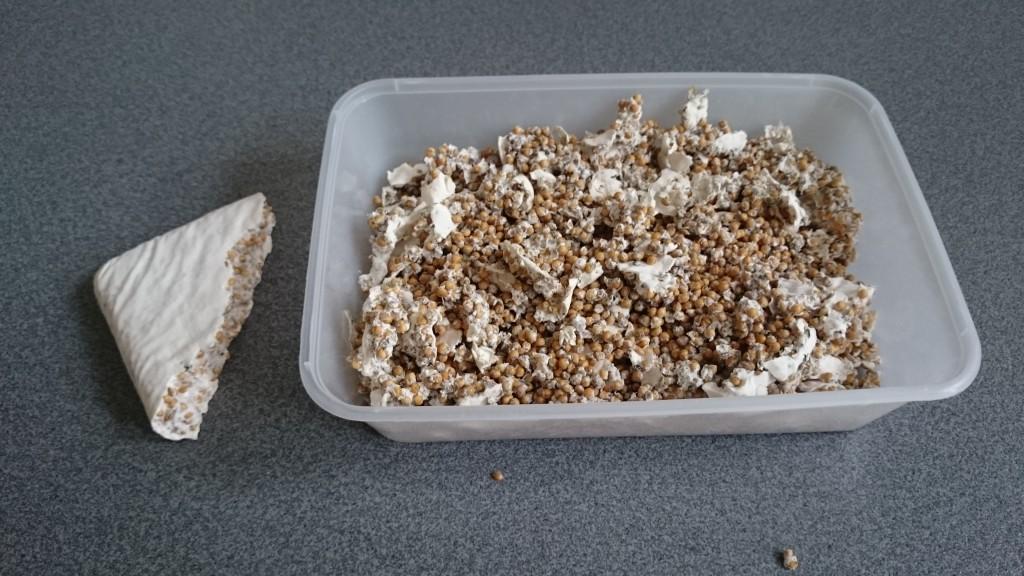 Tag dit mycelium, og hvis ikke allerede det er i små perler, så bræk det forsigtigt i stykker.